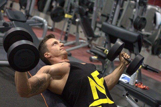 Muscled man in action, bench press with dumbbells for explosive training